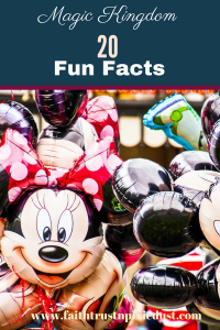 magic kingdom 20 fun facts