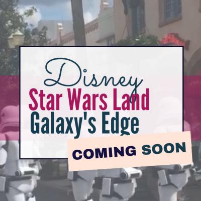 Disney – Star Wars Land  – Galaxy's Edge