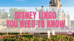 Disney Lingo - what you need to know to get by when on vacation.