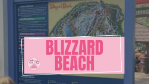 Disneys Blizzard Beach