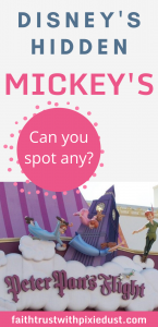 Hidden Mickeys at Disney World