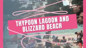 Typhoon Lagoon & Blizzard Beach