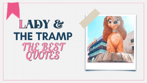 Lady and the tramp quotes best of